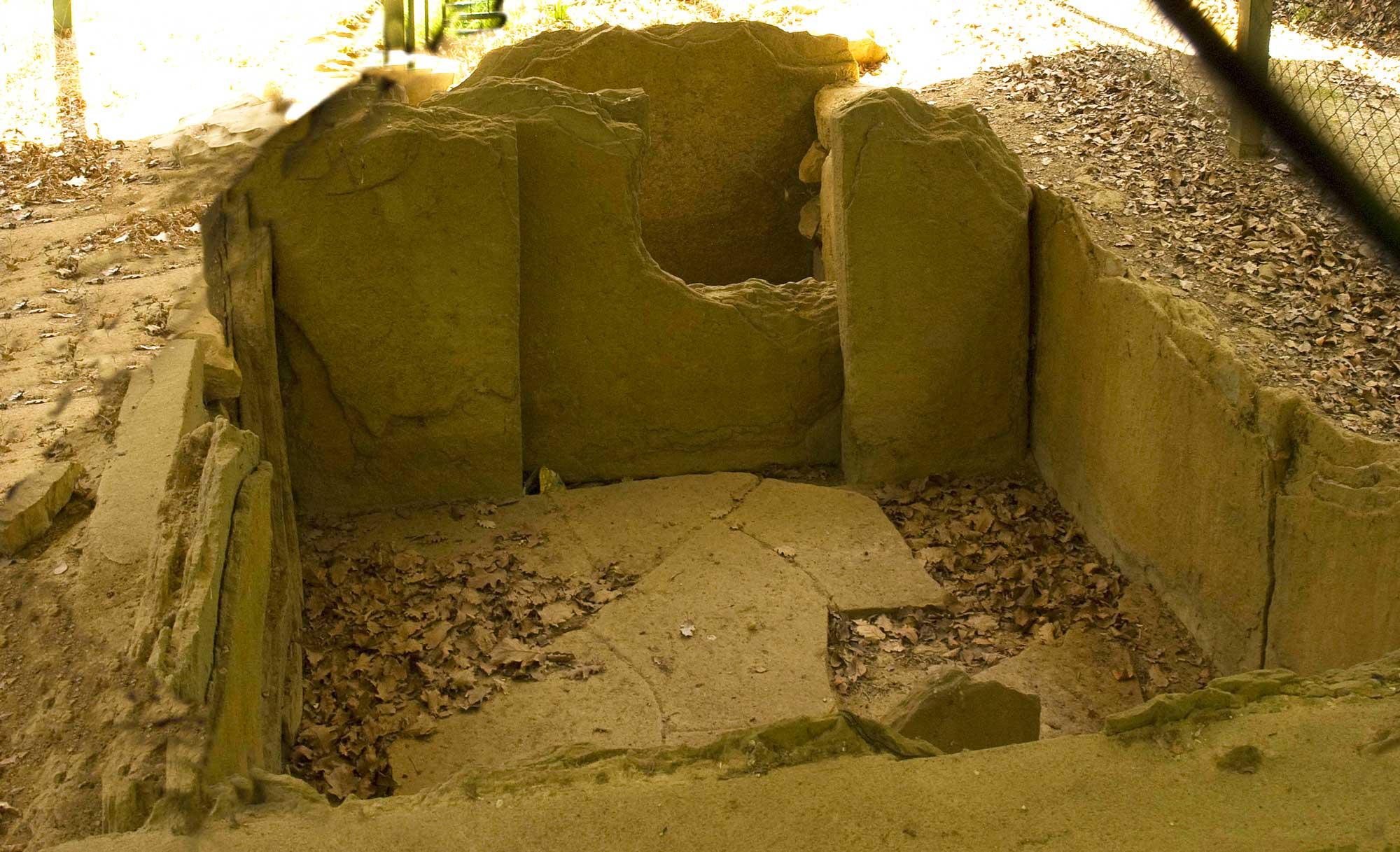 Tomba dei boschetti