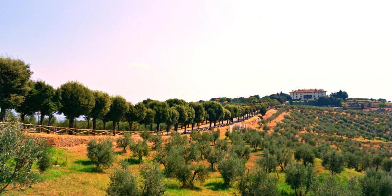Via degli Etruschi