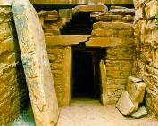 Aree archeologiche